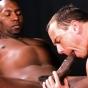 White Gay Gobbling A Big Black Dick