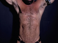 Tough looking gay bear with thick chest hair posing in leathers and exposes his revved up cock live